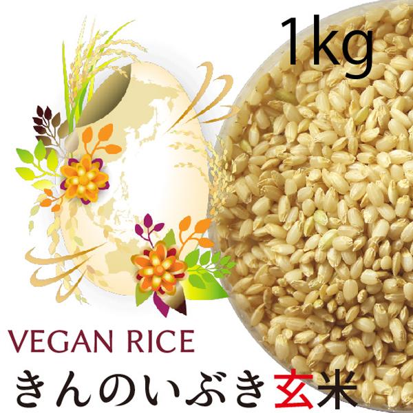 金のいぶき玄米1㎏