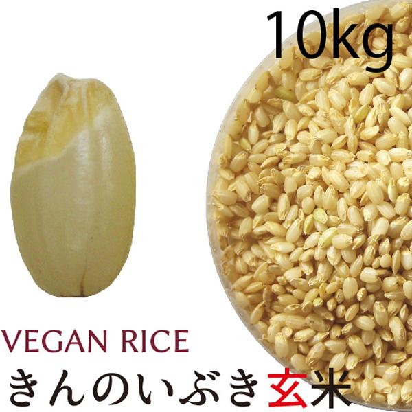 金のいぶき玄米10㎏