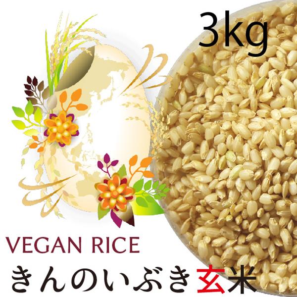 金のいぶき玄米3㎏