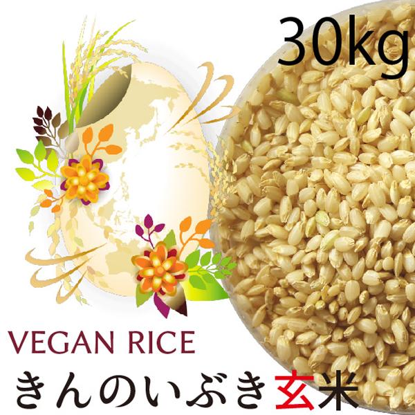 金のいぶき玄米30㎏