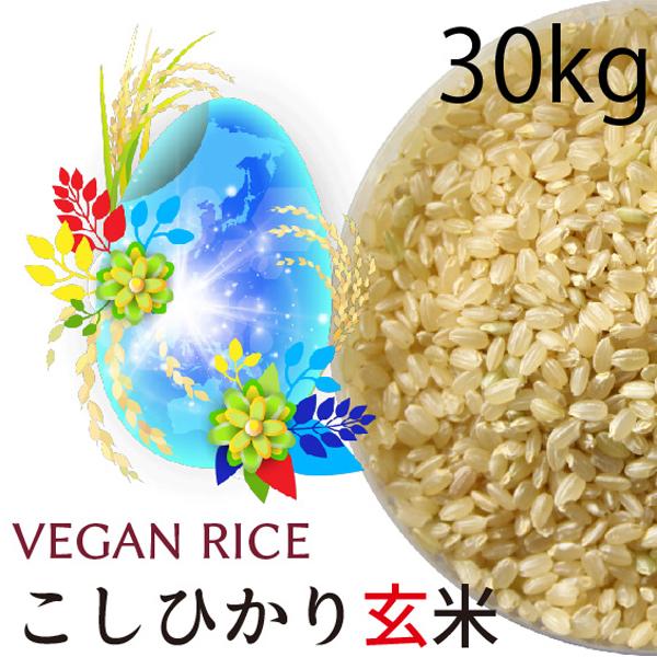 コシヒカリ玄米 30kg