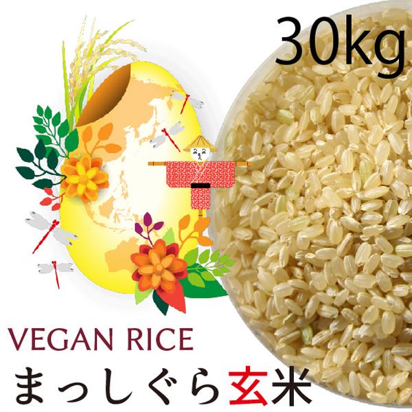 まっしぐら玄米30㎏