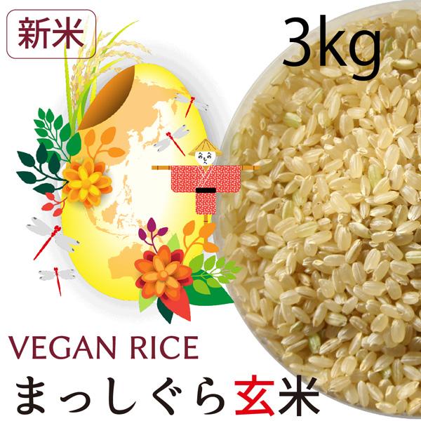 【新米】まっしぐら玄米3㎏