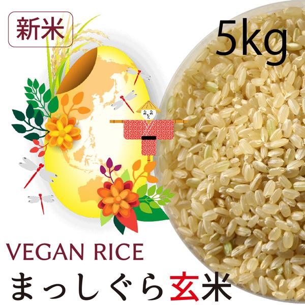 【新米】まっしぐら玄米5㎏
