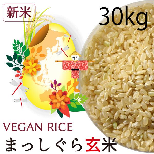 【新米】まっしぐら玄米30㎏